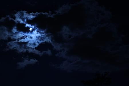 dark night under full moo