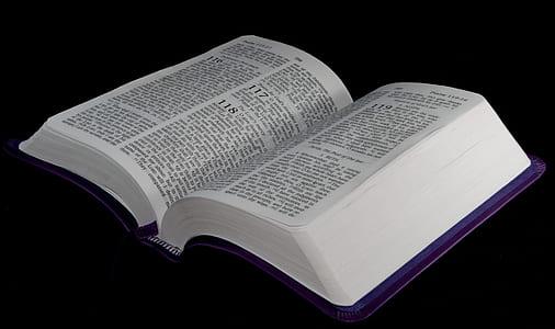 photo of opened bible