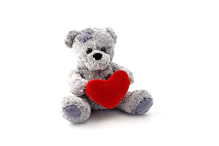 photo of gray bear holding heart plush toy