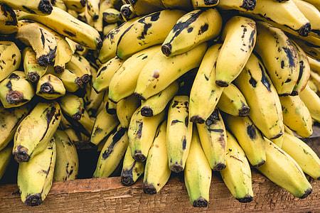 Cuban bananas close up