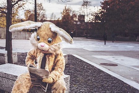 person wearing brown bunny costume