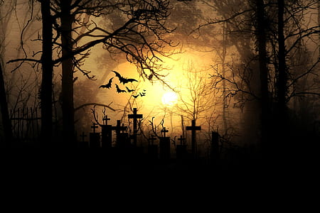 cemetery tomb and trees silhouette