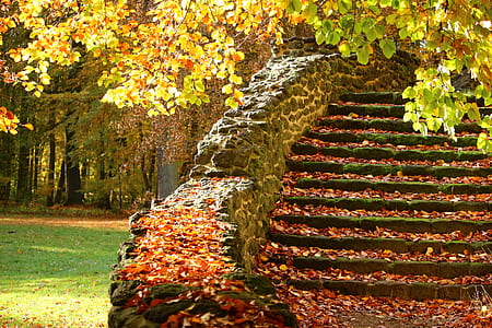 landscape photograph of black stone stairs