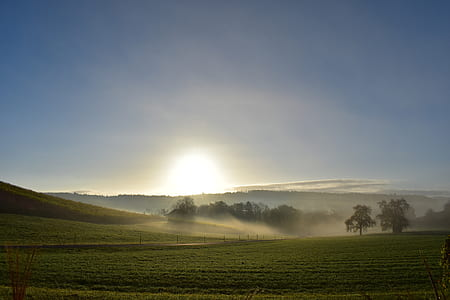 green field with fog and sunrise