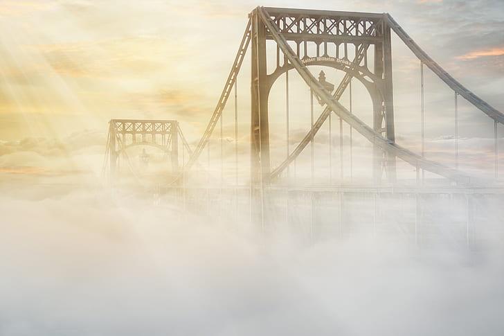 foggy brown bridge