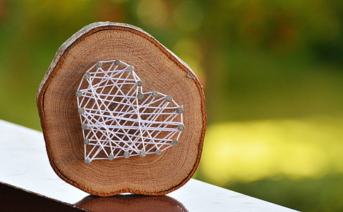 selective focus photography of brown wood log with white heart stringart