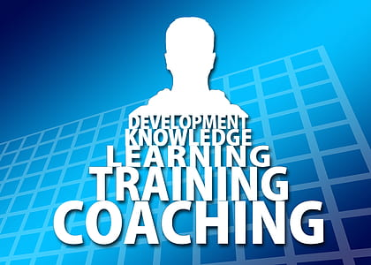 Development knowledge learning training coaching text