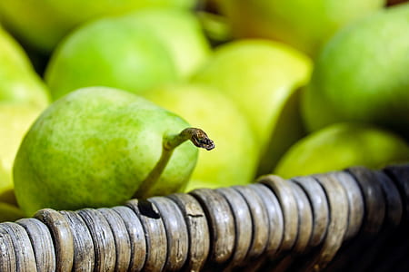 lot of green fruits