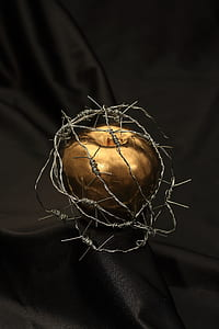 gold apple covered with barbed wires table decor