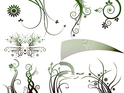 green and white floral illustration