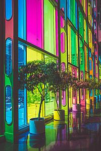 rainbow colored glass wall