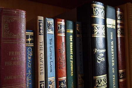 assorted-title books on brown wooden shelf