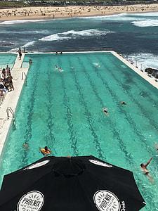 people on swimming pool near beach