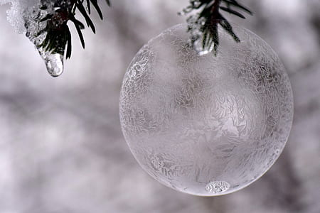 ball, ice ball, frosty, frozen, soap bubble, frozen bubble