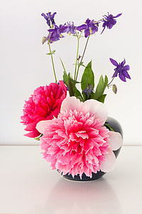 photography of bouquet of pink carnation flowers