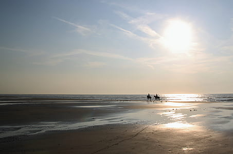 silhouette of two person riding on horse during sunrise