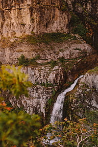 selective focus photography of waterfall in forest