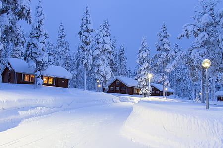 three brown houses on snow field