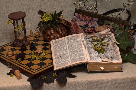 books and flowers on white table still life phoot