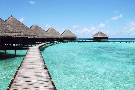 beach hut on the beach