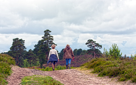 two people walking near green grass at daytime