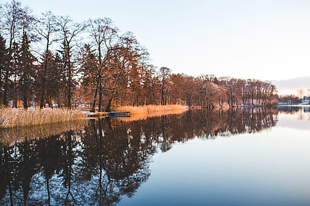 Colorful trees mirroring in the lake