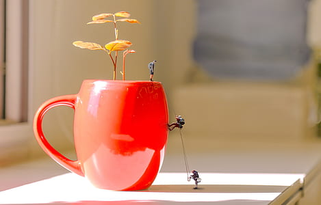three men climbing red ceramic mug with seedling on countertop