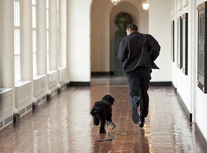 man running with black dog on corridor
