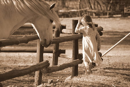 sepia photography of girl standing near horse