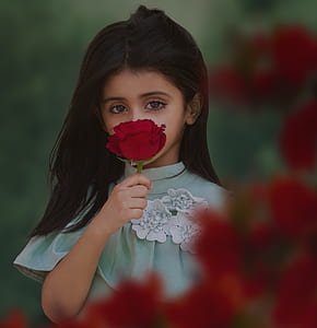 photo of girl holding red rose