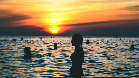 Silhouette Photography of People Swimming on the Beach during Golden Hour