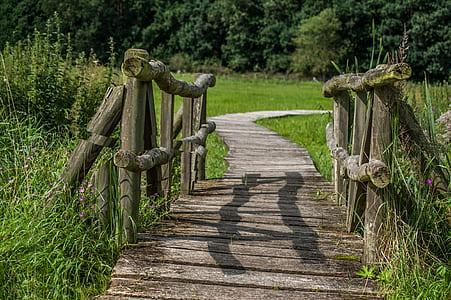 gray wooden bridge