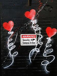 Warning Security Cameras signage