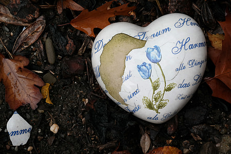 white and blue heart decor near leaf