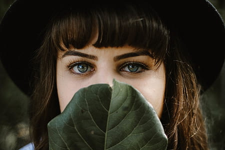 closeup photo of woman's face covered with green leaf