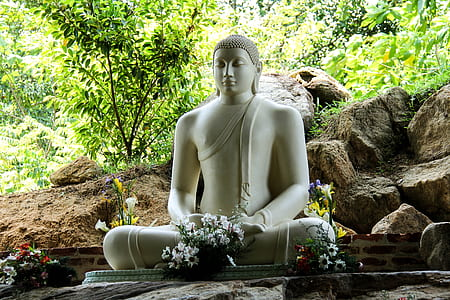 white Buddha statue during daytime