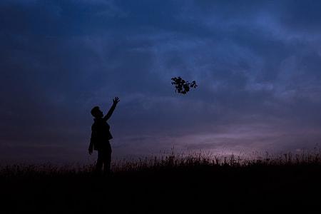 man throwing tree branch during nighttime