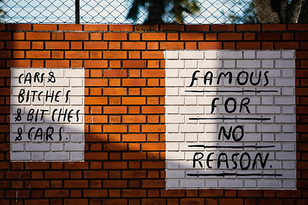 famous for no reason paint