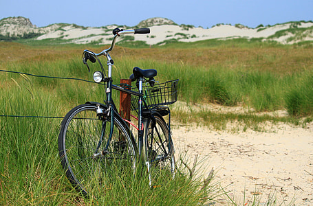 black dutch bicycle surrounding by green grass field during daytime