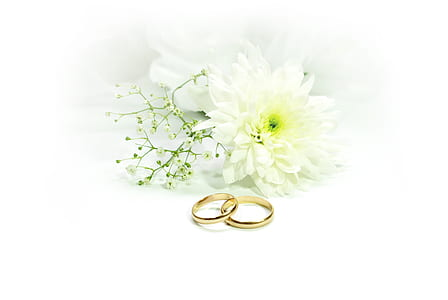 pair of gold-colored engagement ring beside of white flowers