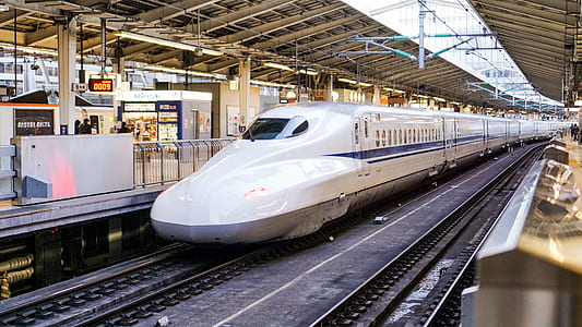 white and blue bullet train