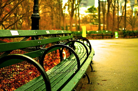 landscape photography of green chair