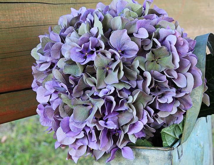purple petaled flower arrangements