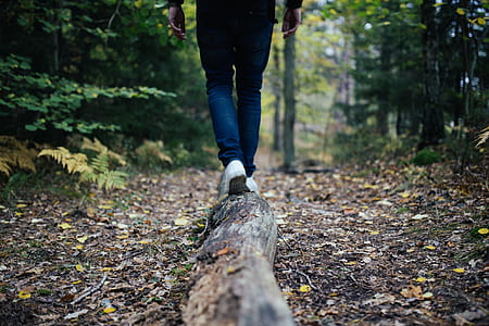 person walking on tree trunk on ground