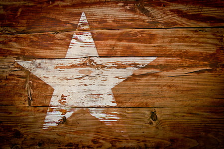 closeup photo of brown and white star-printed board