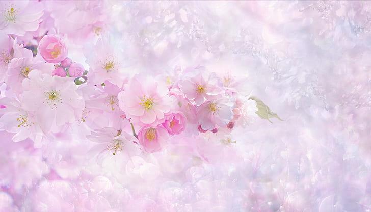 cherry blossom digital wallpaper