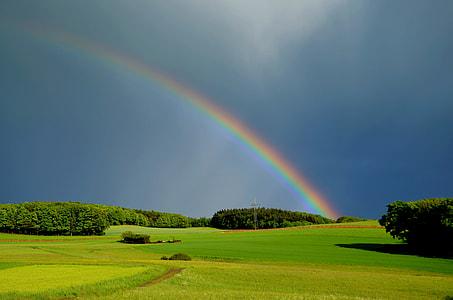 rainbow across green grass field during daytime