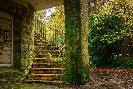 photo of pillar with moss