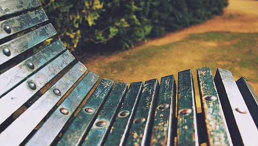 green wooden bench in green lawn during daytime