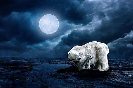 polar bear and baby polar bear on ice with full moon background